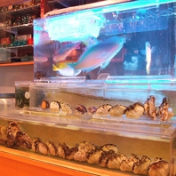自慢の生簀から新鮮な鮮魚を!