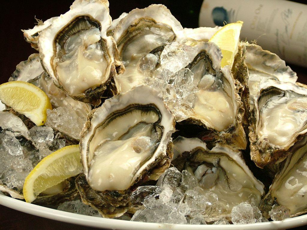 札駅のオイスターバー★厚岸産の生牡蠣が1個210円!生でも焼でも楽しめます♪