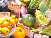 さぬきの大地と海 瀬戸内鮮魚料理店のおすすめ料理3