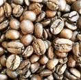 【ブラジル パンタノ農園 ブルボンアマレロ】焙煎度:中煎り(ハイロースト)、焙煎評価:軽いボディ、甘味と酸味のほどよいバランス、やわらかな酸味、総合◎