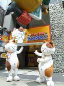 カラオケ本舗 まねきねこ 札幌南3条店の写真