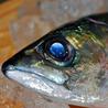 虹色魚 にじいろフィッシュのおすすめポイント2