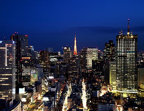 ホテルニューオータニの最上階40階から眺める宝石箱のような夜景は息をのむ美しさ