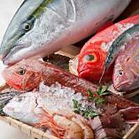 漁港直送のお魚を日本酒とともにご堪能くださいませ♪