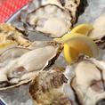 新鮮ぷりぷりな牡蠣がお一つ300円で頂けます。常時8種類以上の産地の牡蠣をご用意しております。生牡蠣はもとろんのこと、焼き牡蠣も絶品です。