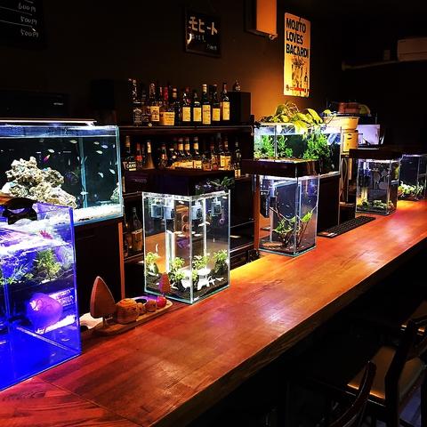 お酒もお魚も楽しめる・・・♪新感覚!お酒が飲める水族館