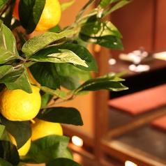 柚柚 yuyu 松山大街道店の雰囲気1