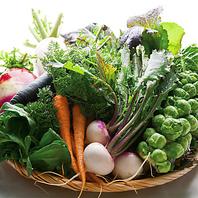 太陽の恵みたっぷりの三浦野菜をご賞味くださいませ!