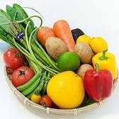 【食材へのこだわり】スタッフ自ら畑へお邪魔していいもの厳選!!皆様に美味しいお野菜をお届けします!