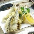 料理メニュー写真こいわしの天ぷら