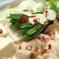 料理メニュー写真【もつ鍋】(豚骨ベース/水炊きベース)
