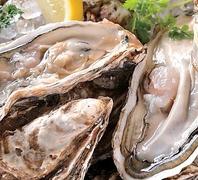 厚岸から直送の牡蠣が1個200円