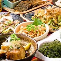 沖縄食堂 あかがわら でいご 大津店の特集写真