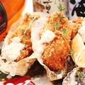 料理メニュー写真広島産牡蠣フライ 海の幸のタルタル