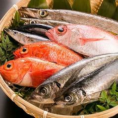 魚の目利き 八重洲店の特集写真