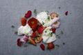 料理メニュー写真フルコースメニューの一例