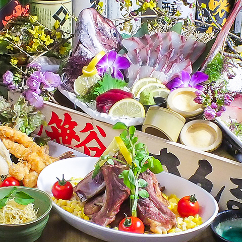 漁師直送姿造り付刺身6種とMIXホルモン牛肉の野菜たっぷり絶品焼鍋[コース]9品+120分飲放5000円