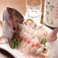相模湾直送の新鮮な鮮魚・魚介類♪当店では相模湾直送の鮮魚を生簀から取り出し、その場で活き〆でご提供♪鮮魚料理の美味しい理由がここにあります!!