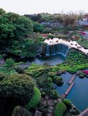 ホテルニューオータニ 清泉亭の雰囲気3