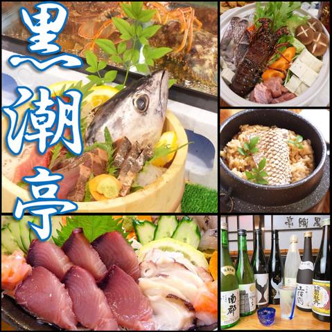 魚卸直営!安く旨い海鮮の老舗 新鮮な宇和海の幸をサービス価格で味わえる海鮮居酒屋