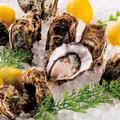 料理メニュー写真北海道や兵庫県からの産直新鮮!『旬』の国産生牡蠣♪
