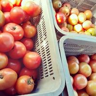 産地・地元の野菜にこだわりってご提供。
