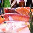 漁師さんから直仕入れの新鮮な魚を!!釣った魚をお持ちください♪お店で調理OK!