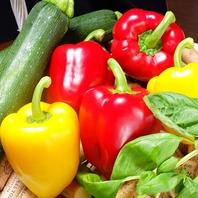 【食材にこだわりあり!】高知県産の食材を多数使用