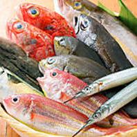 漁港から直送の新鮮魚介類!