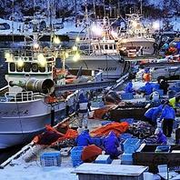 産地直送鮮魚【市場】ではなく【漁港】から直送