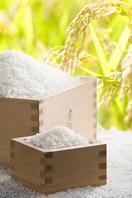 お米は愛知産米「あいちのかおり」を使用しています。
