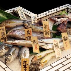 炭焼炉端 二代目 真魚板の特集写真