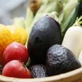 【会津の無農薬有機野菜】感動するほど美味しい会津のミネラルたっぷり有機野菜。有機ミネラル発酵肥料を使用し、土づくりからこだわっている為、安全・安心で美味しい野菜を味わっていただけます。