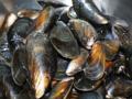 料理メニュー写真冷製ムール貝のガーリック蒸し