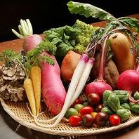 三浦半島から毎朝届く、厳選した朝摘み野菜!