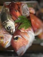必ず食べてほしい新鮮旬魚!鮮度にこだわり!