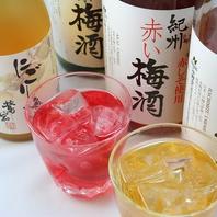 梅酒は20種類以上ご用意。新宿でもトップクラスの豊富さ