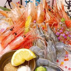 牡蠣×海老 かいり 恵比寿店の特集写真