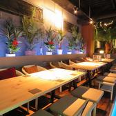 リゾートレストラン&バー スターリスト Star Ristの雰囲気2