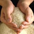 お米は新潟県魚沼沼産コシヒカリを使用しています。