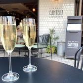 pizzeria napoletana CANTERA カンテラ 調布店の雰囲気3