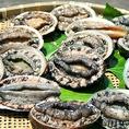 刺身には黒あわび、酒蒸しやステーキには赤あわびを使用。九州、玄界灘、三重、房州、三陸産などのその時一番肉厚のものを買い付けております。蝦夷活あわびをそのまま食べていただく踊り食いは、抜群の食感と潮の香りが口中に広がり、漁師さんしか味わえない贅沢さを味わえます。