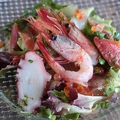 料理メニュー写真目利き樋口さんのカルパッチョ5種盛り