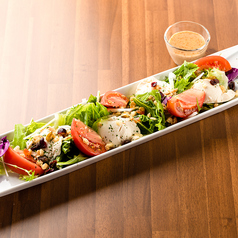 豆腐とドライフルーツの健康サラダ(ごまドレッシング)(小)