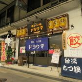 餃子×もつ鍋 ドラウマの雰囲気3