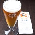料理メニュー写真【クラフトビール】496