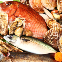 【新鮮な魚介と野菜】
