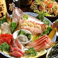【直接仕入れの朝獲れ鮮魚】毎日変わるオススメ鮮魚が有