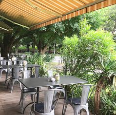 ロイヤルガーデンカフェ Royal Garden Cafe 青山の外観2
