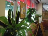 Kitchen KAZUの雰囲気2